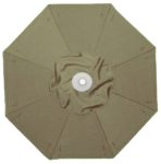Sunbrella Fern