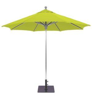 Galtect 732 Sunbrella Parrot